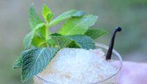 Vanilla Bean Mint Julep